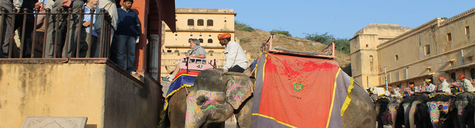 Elephant Ride Amer Fort Jaipur